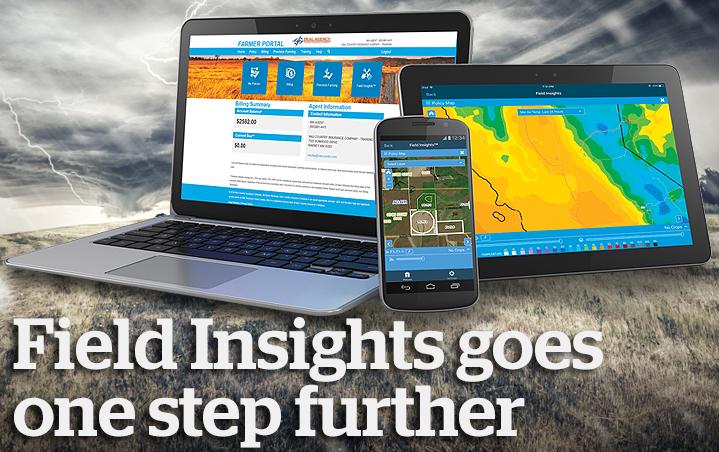 Field Insights