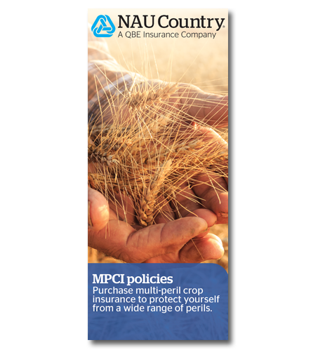 Download the MPCI Brochure