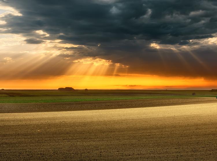 Crop Insurance FAQ