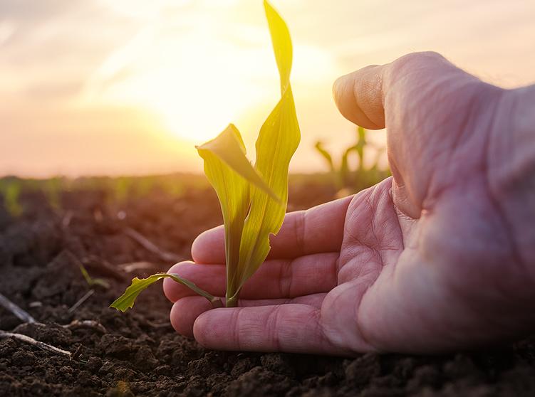 Support Farmers, Reject Anti-Farmer Amendments