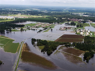 North Carolina Farmers post Hurricane Florence