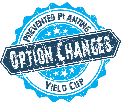 Option Changes
