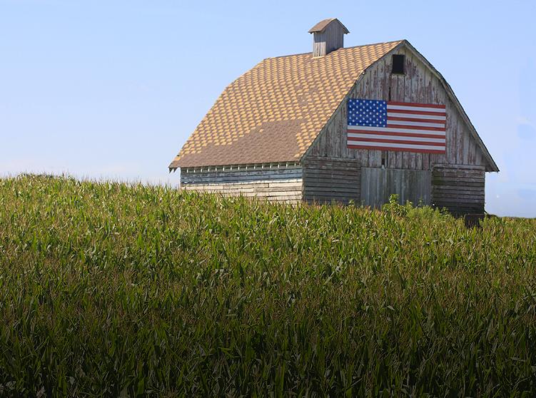 Rural America's struggle