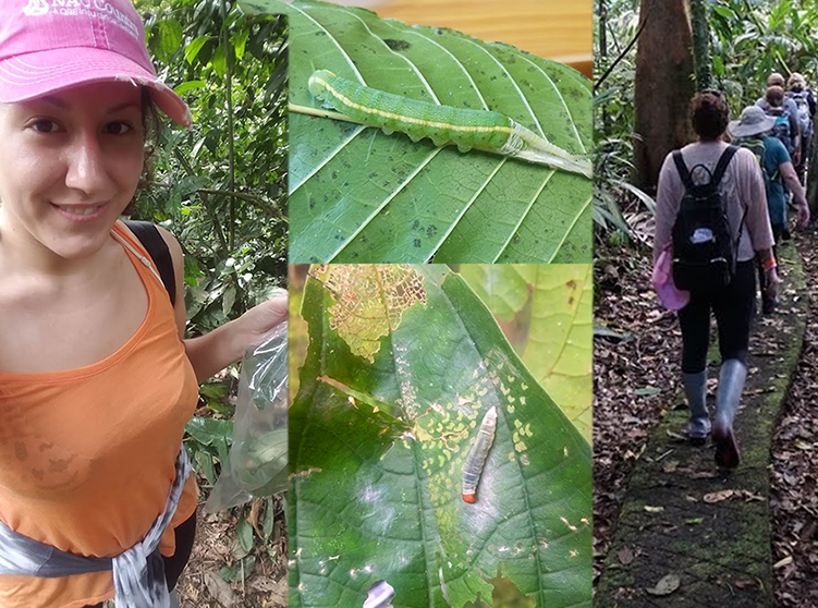 "NAU Country's Eden Schneider was selected to participate in the ""Climate Change and Caterpillars in Costa Rica"" expedition that was stationed at the La Selva Biological Station in Costa Rica."