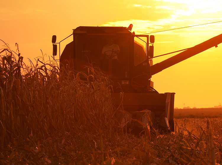 America's farmers face a tough harvest